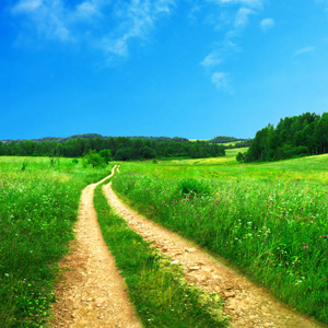 A country dirt road with grass and blue skies.