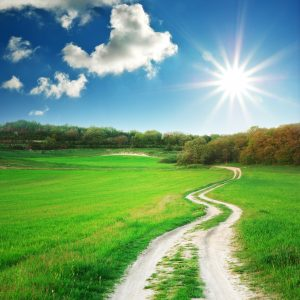 Picture of a winding, dirt road. Very green grass on either side, blue skies and sunshine.